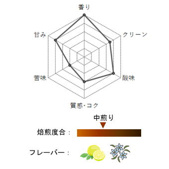 【豆珈房】エチオピア・イルガチェフェ